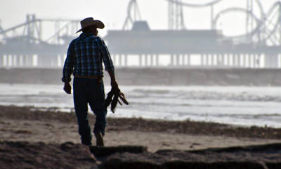Photograph - Beach Cowboy by John Collins