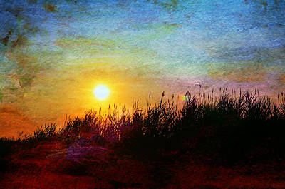 Photograph - Beach Dune Sunset by Laura Fasulo
