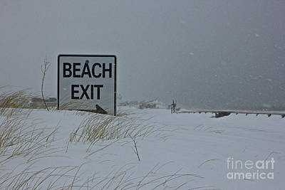 Photograph - Beach Exit  by Amazing Jules