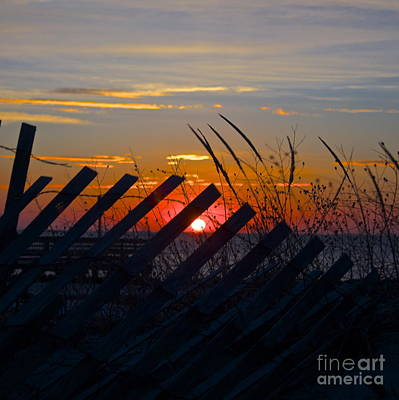 Beach Fence Art Print by Amazing Jules