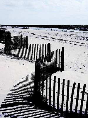 Sand Dunes Painting - Beach Fence Skeleton Spine On Desaturated Beach by Elaine Plesser