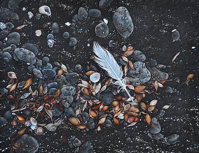 Drawing - Beach Floor. Flinders Vic by Elena Kolotusha