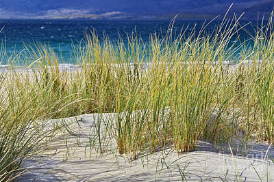 Beach Gras Art Print by Juergen Klust