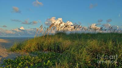 Beach Greenery Panorama Art Print by Bob Sample