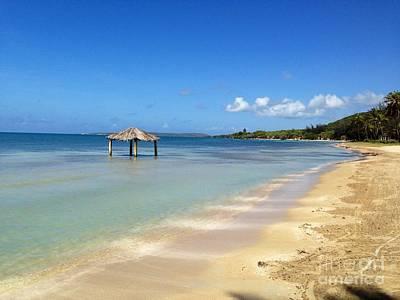 Beach In Puerto Rico Print by Nancy Balducci
