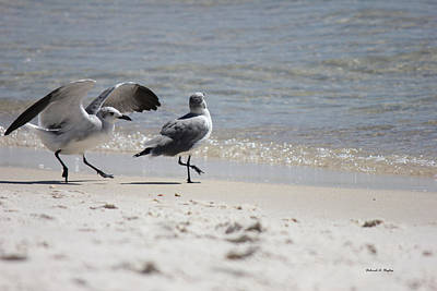 Photograph - Beach Landing by Deborah Hughes