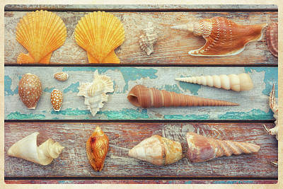 Shell Sign Painting - Beach Memories II by Cora Niele