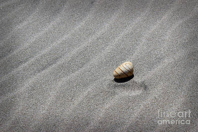 Photograph - Beach Minimalism by Morgan Wright