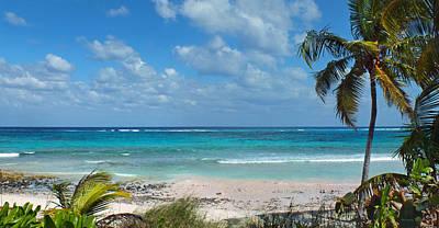 Photograph - Beach Near Tippy's by Duane McCullough