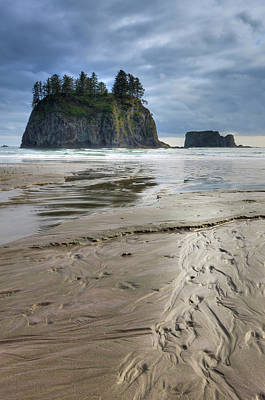 Olympic National Park Photograph - Beach Olympic National Park by Tom Norring