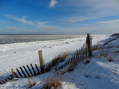Beach On A Winter Morning Art Print