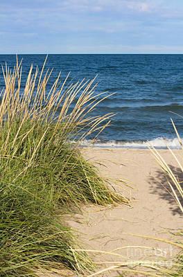 Beach Path Art Print by Barbara McMahon