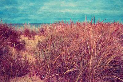 Photograph - Beach Path Through The Grasses by Michelle Calkins