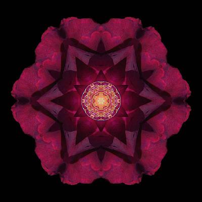 Print featuring the photograph Beach Rose I Flower Mandala by David J Bookbinder