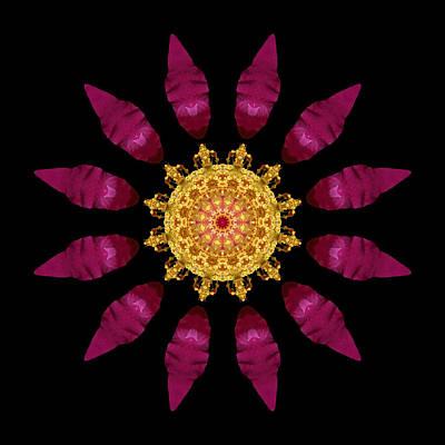 Beach Rose Iv Flower Mandala Art Print