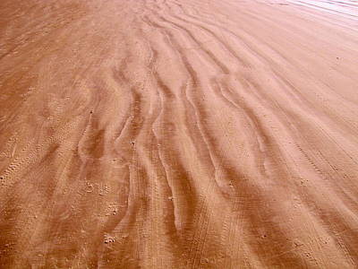 Photograph - Beach Sand Tracks Of Time by RobLew Photography