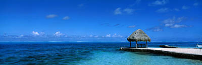 Boras Photograph - Beach Scene Bora Bora Island Polynesia by Panoramic Images