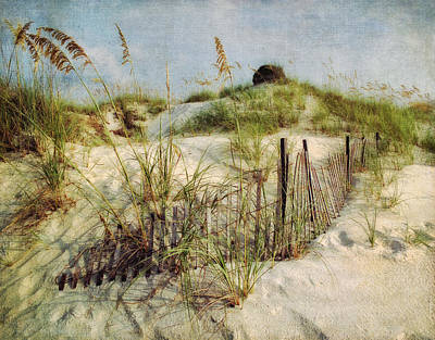 Photograph - Beach Sea Oats Panama City Fl by Greg Kluempers