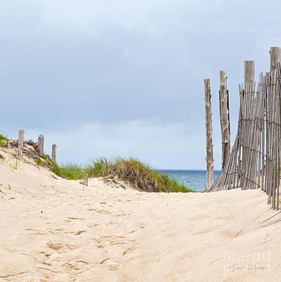 Beach Sentinels On The Cape II Art Print by Michelle Wiarda