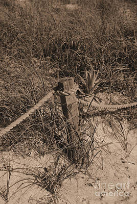 Photograph - Beach Sepia Scene by Bob Sample