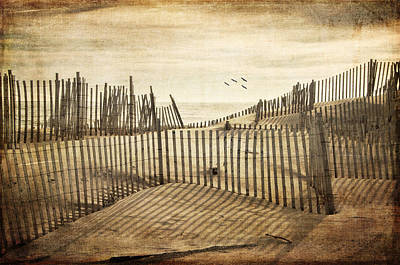 Beach Shadows Art Print