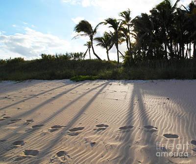 Beach Shadows Print by Michelle Wiarda