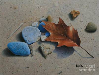 Still Life Drawings - Beached II by Pamela Clements