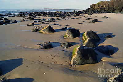 Beach Stones I Art Print by Cassandra Buckley