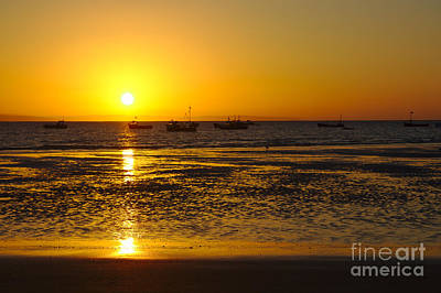 Photograph - Beach Sunrise by Jeremy Hayden
