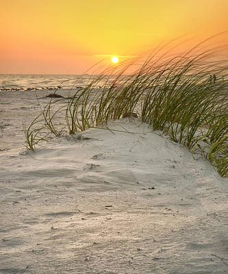 Photograph - Beach Sunset by Darylann Leonard Photography
