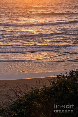 Photograph - Beach Sunset by Kate Brown