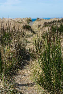 Photograph - Beach Trail by Tikvah's Hope