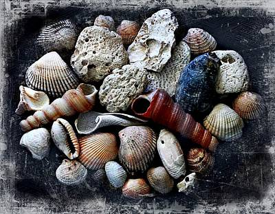 Photograph - Beach Treasures by Virginia Folkman