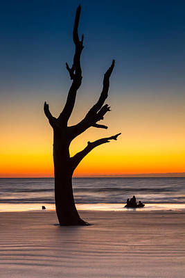 Photograph - Beach Tree Sunset by Pierre Leclerc Photography