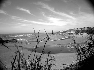 Photograph - Beach Vignette From Above by Tarey Potter