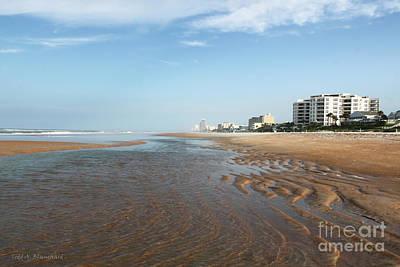 Art Print featuring the photograph Beach Vista by Todd Blanchard