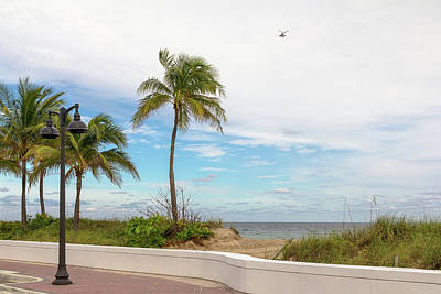 Beach With Palm Trees And A Helicopter Art Print