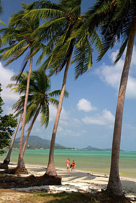 China Beach Photograph - Beach With Palm Trees And The Gulf by David R. Frazier