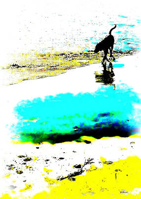 Digital Art - Beachcomber by Brian D Meredith