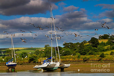 Sailboat Photograph - Beached Boats On The River Avon by Louise Heusinkveld