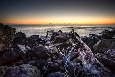 Photograph - Beached by Brad Grove