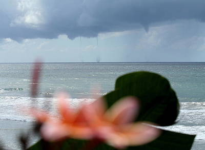 Whimsically Poetic Photographs Rights Managed Images - Beachfront Water Spouts With Plumerias Royalty-Free Image by Teddy V
