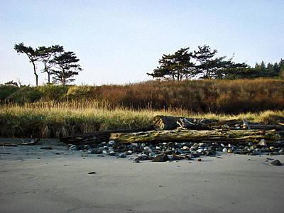 Photograph - Beachscape by Ronda Broatch