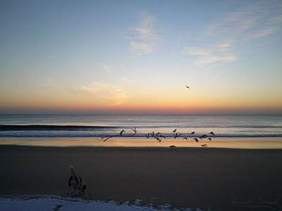 Photograph - Beagle Birds Coming Dawn by Robert Banach