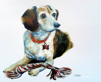Painting - Beagle by Carolyn Jarvis