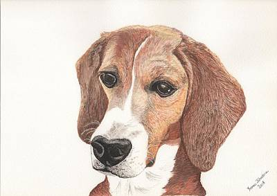Painting - Beagle Dog Portrait by Yvonne Johnstone