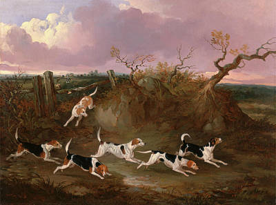 Harrier Painting - Beagles In Full Cry Harriers Signed And Dated In Orange by Litz Collection