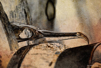 Photograph - Beak by WB Johnston