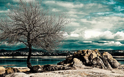 Photograph - Beals Point by Cindi Castro
