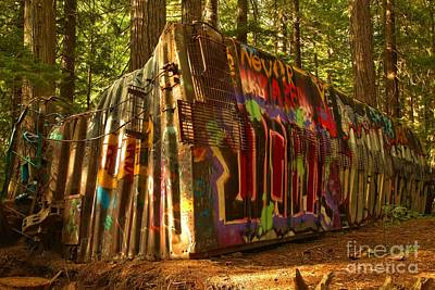 Photograph - Beams Of The On The Whistler Train Wreck by Adam Jewell